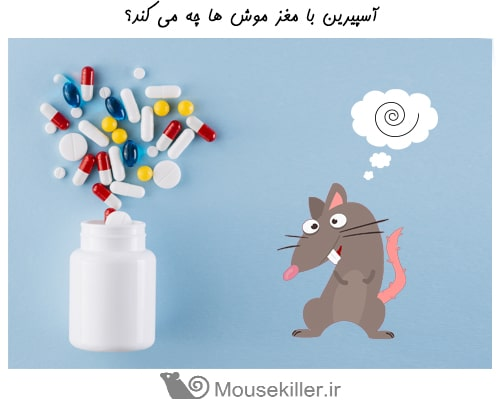 آسپرین باعث مرگ موش ها می شود؟