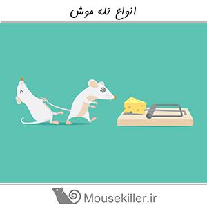 انواع تله موش ها