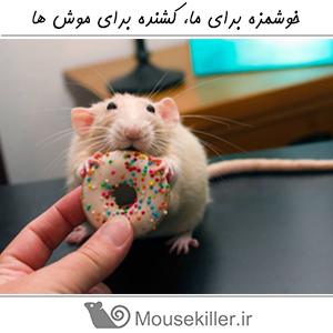 Delicious Mouse Killer 12